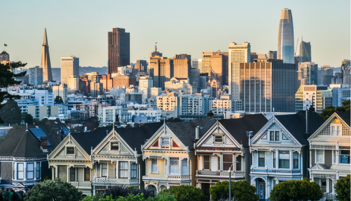 View of Painted Ladies and the SF Skyline from Alamo Square Park