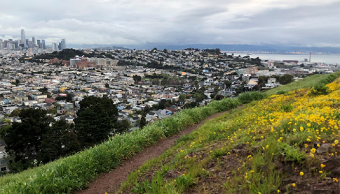 view of trail along hillside with view of downtown SF